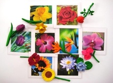flower cards and objects arranged