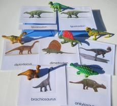 laminated cards with objects on a white desk